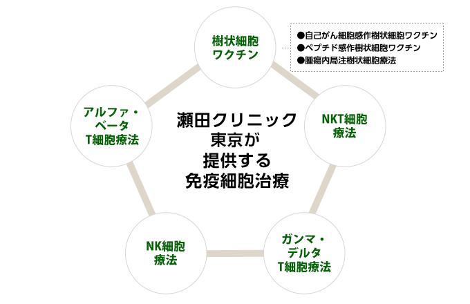 瀬田クリニックグループが提供する免疫細胞治療