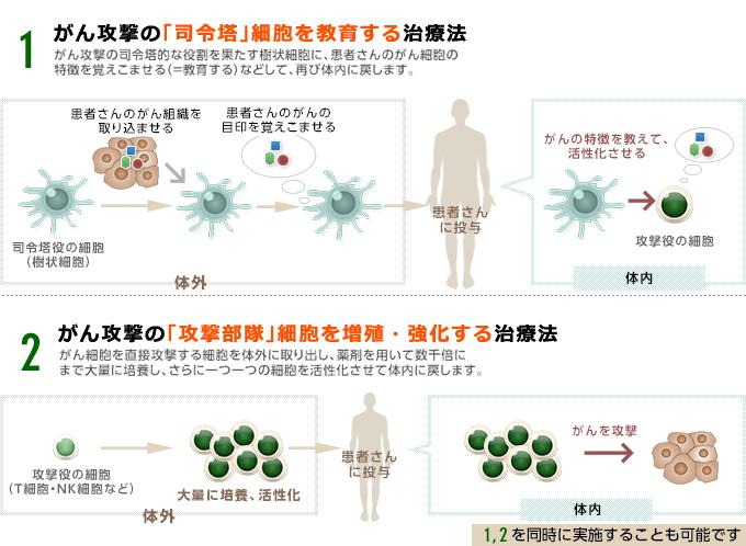 免疫細胞治療の種類