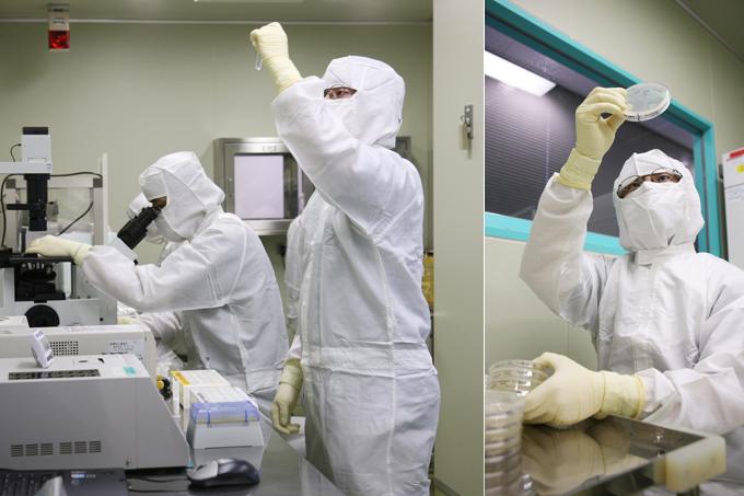 細胞の検査 細胞培養の各工程で無菌検査を実施するとともに、投与前には、身体にショックを起こすエンドトキシン(発熱性物質)検査や生細胞数の測定などを行います。