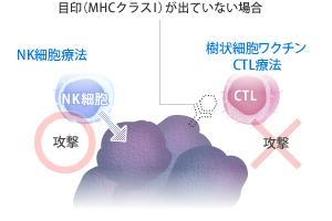 nk_image02