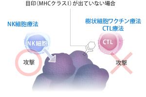 nk_image02.jpg