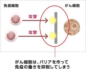 ポイント 阻害 チェック 剤 免疫
